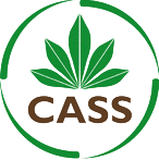 Cassava Source-Sink Project