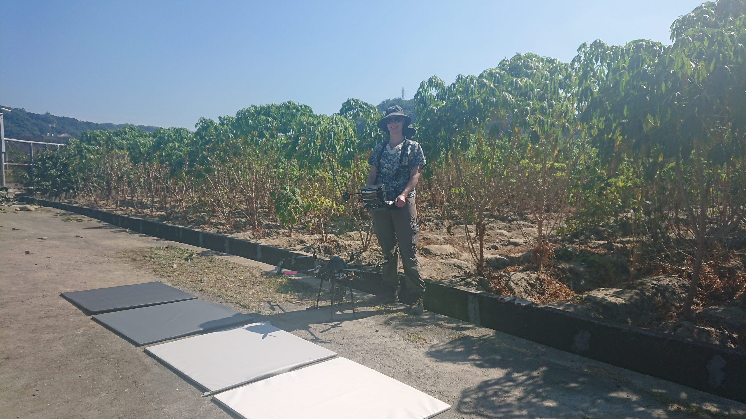 Drone phenotyping reveals differences in cassava growth