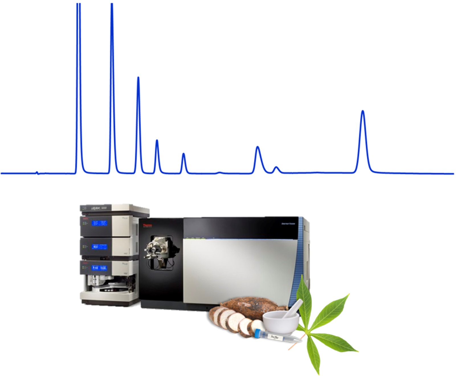 Cassava Metabolomics and Starch Quality